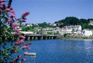 bideford river torridge image