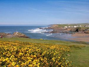 picture of summerleaze beach bude cornwall