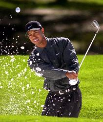 tiger woods blasts out of a bunker