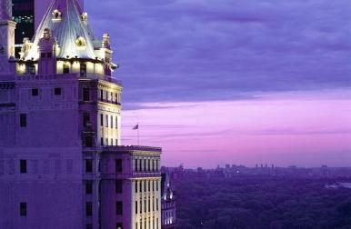 new york hotels - the st regis image